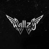 Wallzy